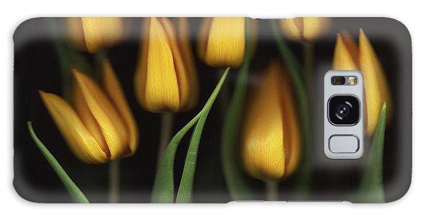 Tulips Galaxy Case - Tulips by Brian Haslam