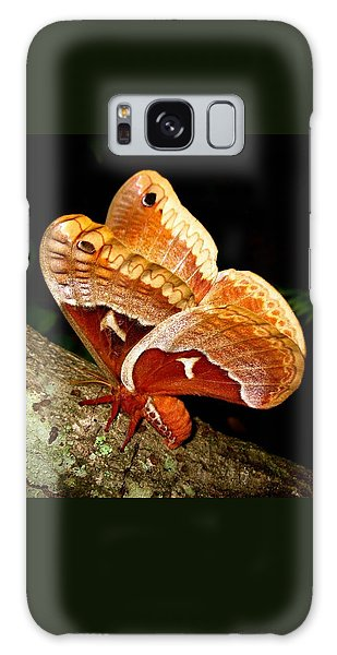 Tuliptree Silkmoth Galaxy Case