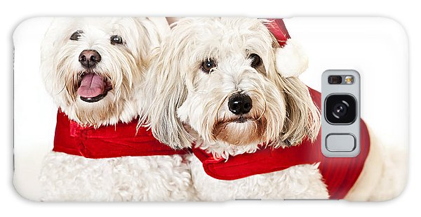 Santa Claus Galaxy Case - Two Cute Dogs In Santa Outfits by Elena Elisseeva