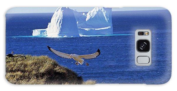 Wandering Albatross (diomendea Exulans Galaxy Case