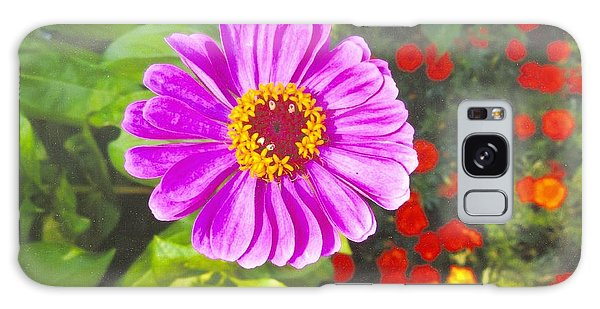 Warm Pink Zinnia Galaxy Case by Rod Ismay
