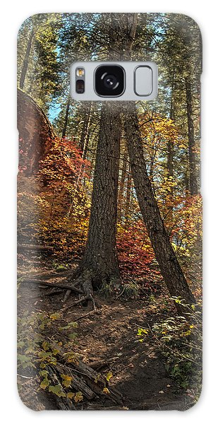 West Fork Fall Color Galaxy Case