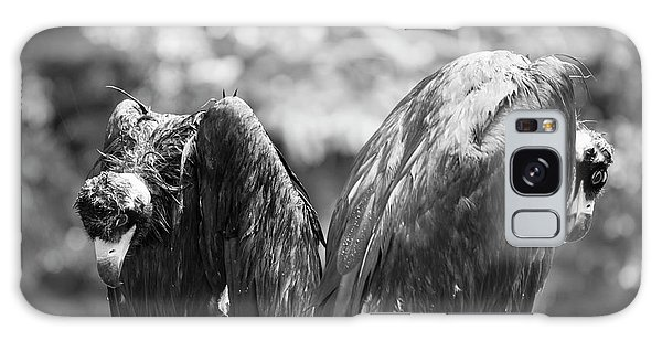 White-backed Vultures In The Rain Galaxy Case