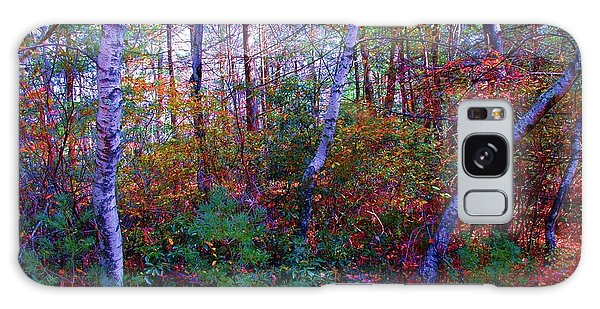 White Birch - Pocono Mountains Galaxy Case
