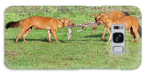 Wild Dogs Playing With A Carcass Galaxy Case