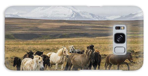 Wild Icelandic Horses Galaxy Case