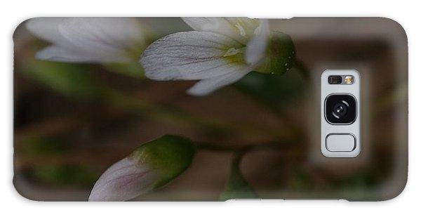 Wildflower Galaxy Case by Loni Collins