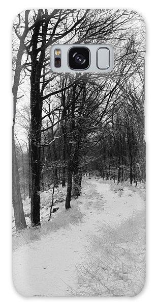 Winter Forest Galaxy Case