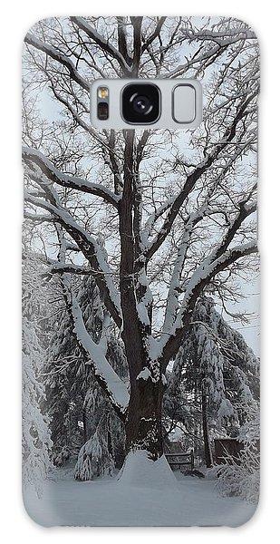 Winter Oak Galaxy Case by John Wartman
