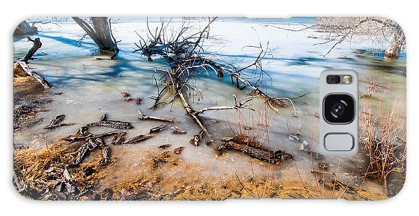 Winter Shore At Barr Lake Galaxy Case