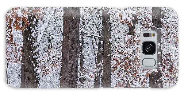 Winter Trees Galaxy Case by Larry Bohlin