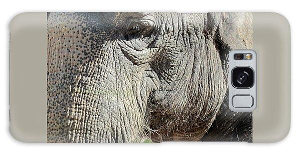 Wise One,elephant  Galaxy Case