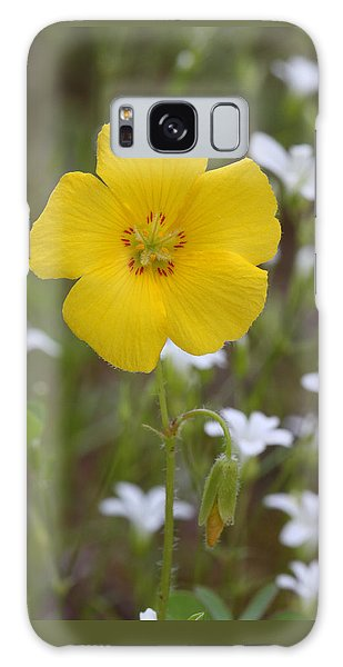 Wood Sorrel And Sandwort Galaxy Case