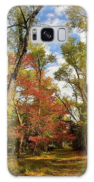 Galaxy Case - Woodland Path In Autumn by A Gurmankin
