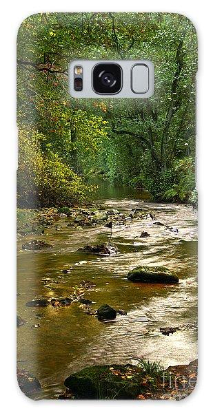 Woodland Stream In Autumn Galaxy Case