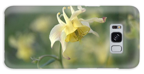Yellow Columbine Galaxy Case