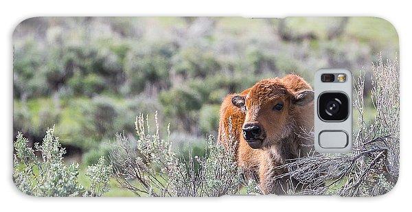 Bison Calf Galaxy Case
