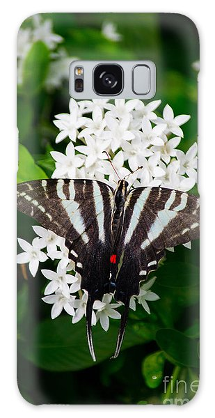 Zebra Swallowtail Galaxy Case by Angela DeFrias