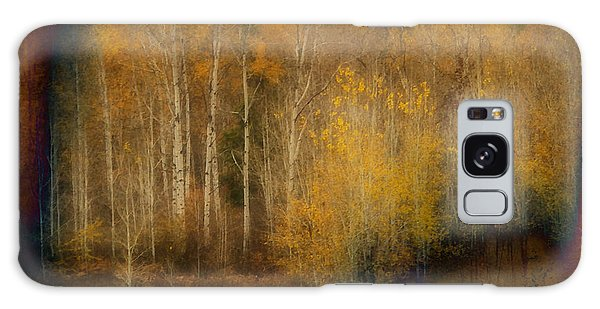 Fall At Sheep Creek Galaxy Case by Loni Collins
