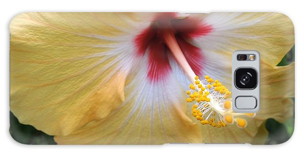 Hibiscus Galaxy Case by Ron Davidson