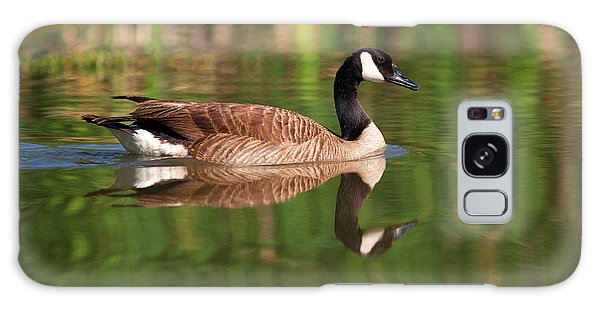 Canada Goose Galaxy Case - Usa, California, San Diego, Lakeside by Jaynes Gallery