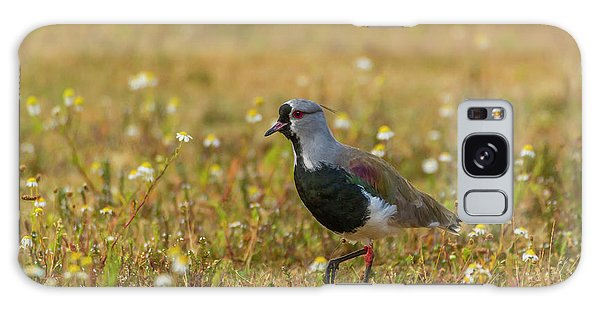 Lapwing Galaxy Case - South America, Chile, Patagonia, Torres by Jaynes Gallery