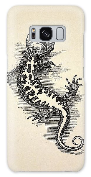 Newts Galaxy Case - 1863 Kingsley Waterbabies Human Newt by Paul D Stewart