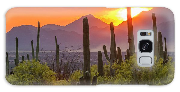 Usa, Arizona, Saguaro National Park Galaxy S8 Case