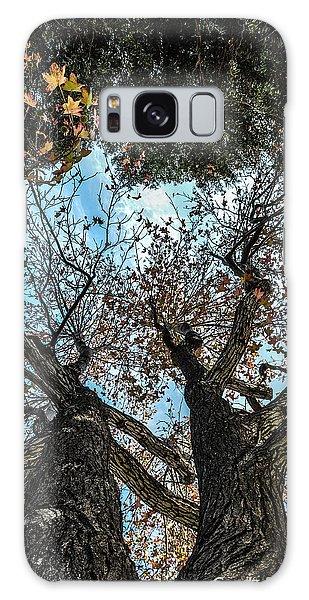 1st Tree Galaxy Case by Gandz Photography