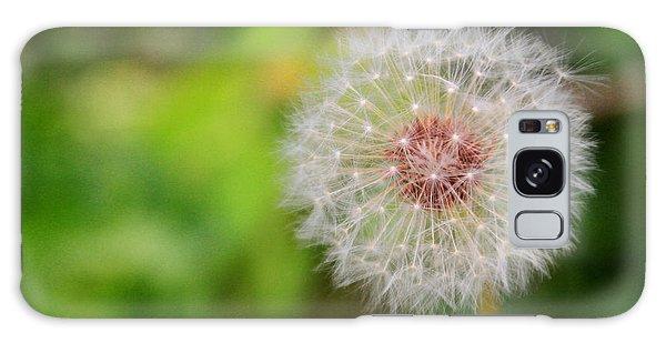 A Dandy Dandelion Galaxy Case