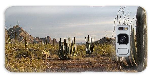 Arizona Desert Galaxy Case