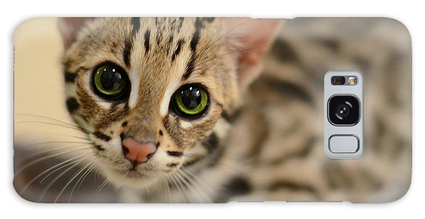 Cat Galaxy Case - Asian Leopard Cub by Laura Fasulo
