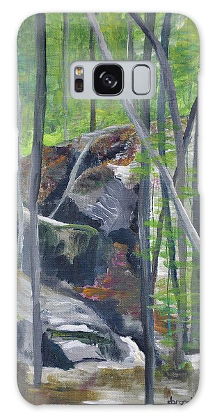 Backyard At Sussex 2 Galaxy Case by Dottie Branchreeves
