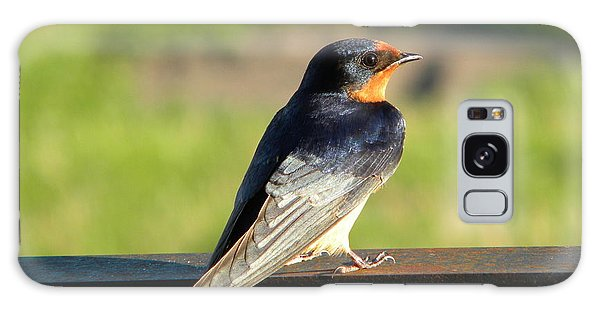 Barn Swallow Galaxy Case