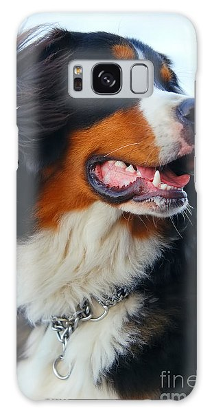Beautiful Dog Portrait Galaxy Case