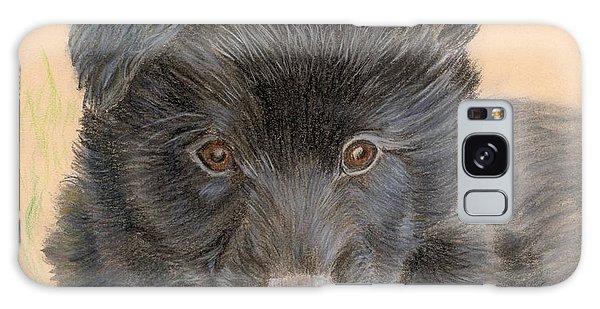 Belgian Sheepdog Puppy Galaxy Case by Ruth Seal