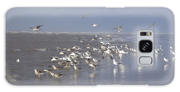 Birds At The Beach Galaxy Case