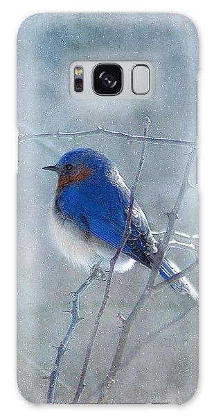 Perches Galaxy Case - Blue Bird  by Fran J Scott