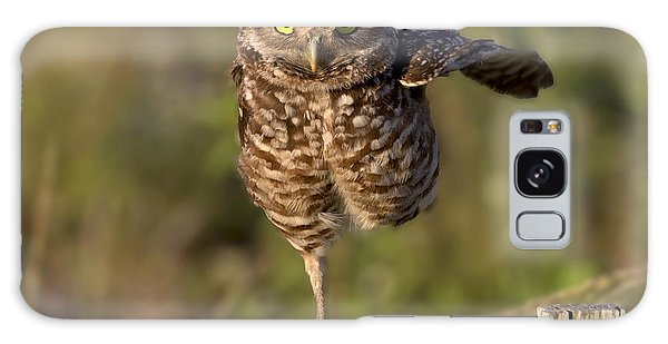 Burrowing Owl Photograph Galaxy Case by Meg Rousher