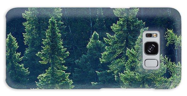 Boreal Forest Galaxy Case - Canada, Ontario Algonquin Provincial by Jaynes Gallery