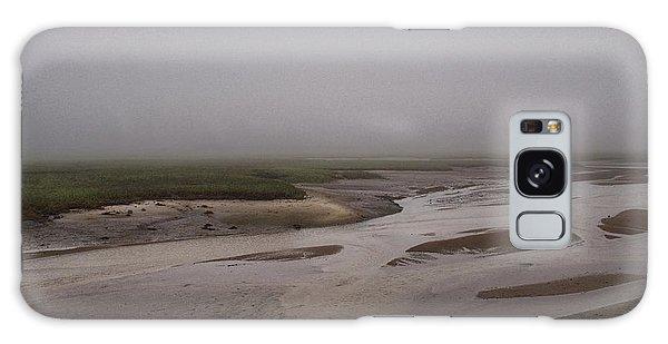 Cape Cod Marsh Galaxy Case