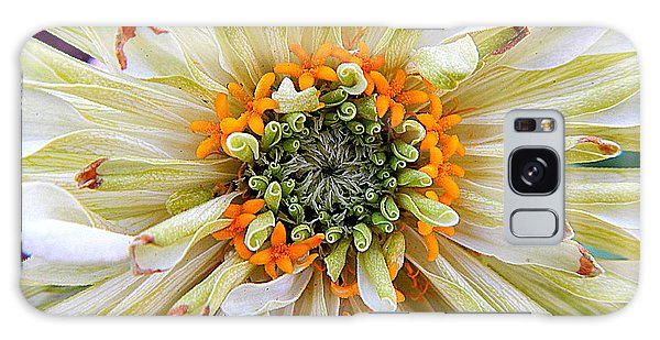 Chrysanthemum Fall In New Orleans Louisiana Galaxy Case