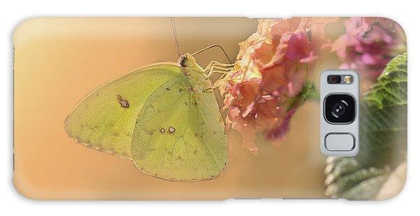 Clouded Sulphur Butterfly Galaxy Case by Betty LaRue