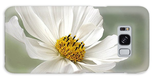 Cosmos Flower In White Galaxy Case