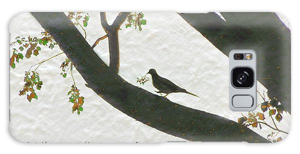 Dove Silhouette On Tree Galaxy Case