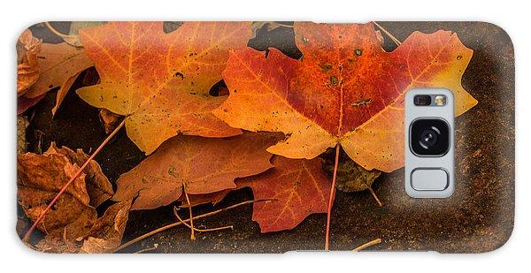 West Fork Fallen Leaves Galaxy Case