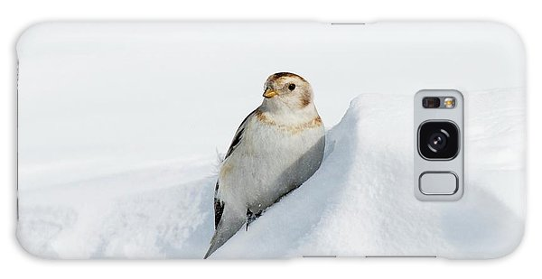 Cairngorms National Park Galaxy Case - Female Snow Bunting by Duncan Shaw