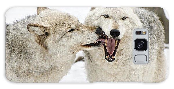 Flirting Wolves Galaxy Case by Gary Slawsky