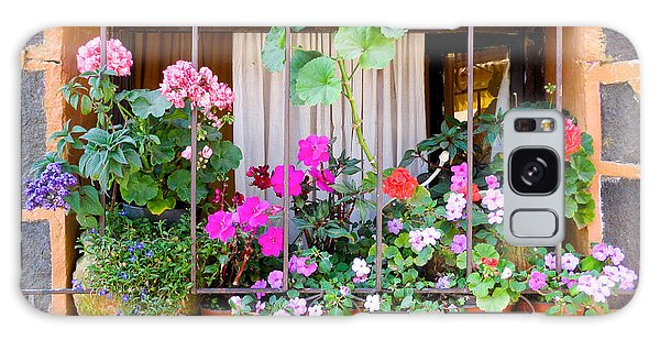 Flowers In A Mexican Window Galaxy Case