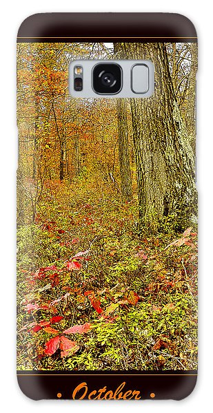Galaxy Case - Forest Interior Autumn Pocono Mountains Pennsylvania by A Gurmankin